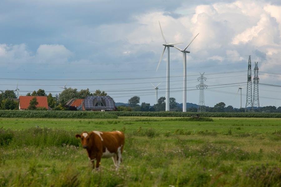"""Mori de vânt și panouri solare: alternativă la energia """"clasică"""""""
