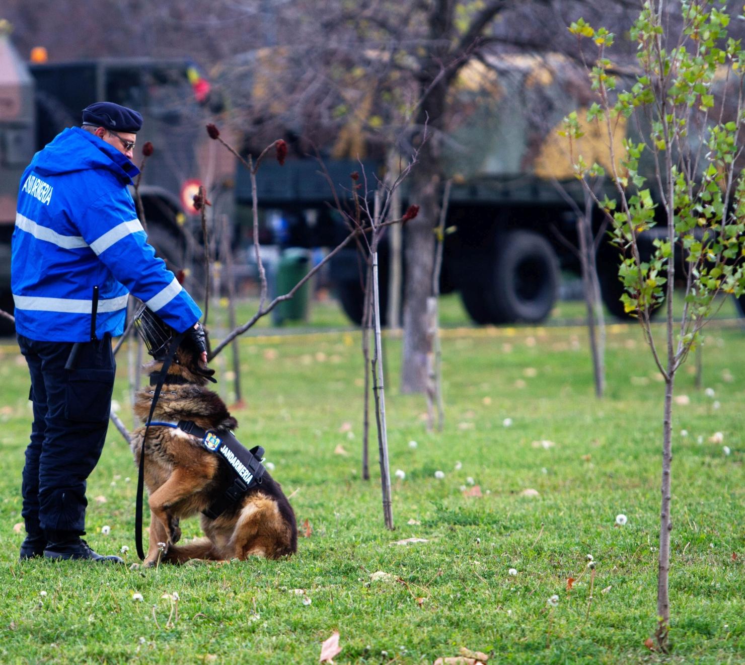 Jandarm cu câine