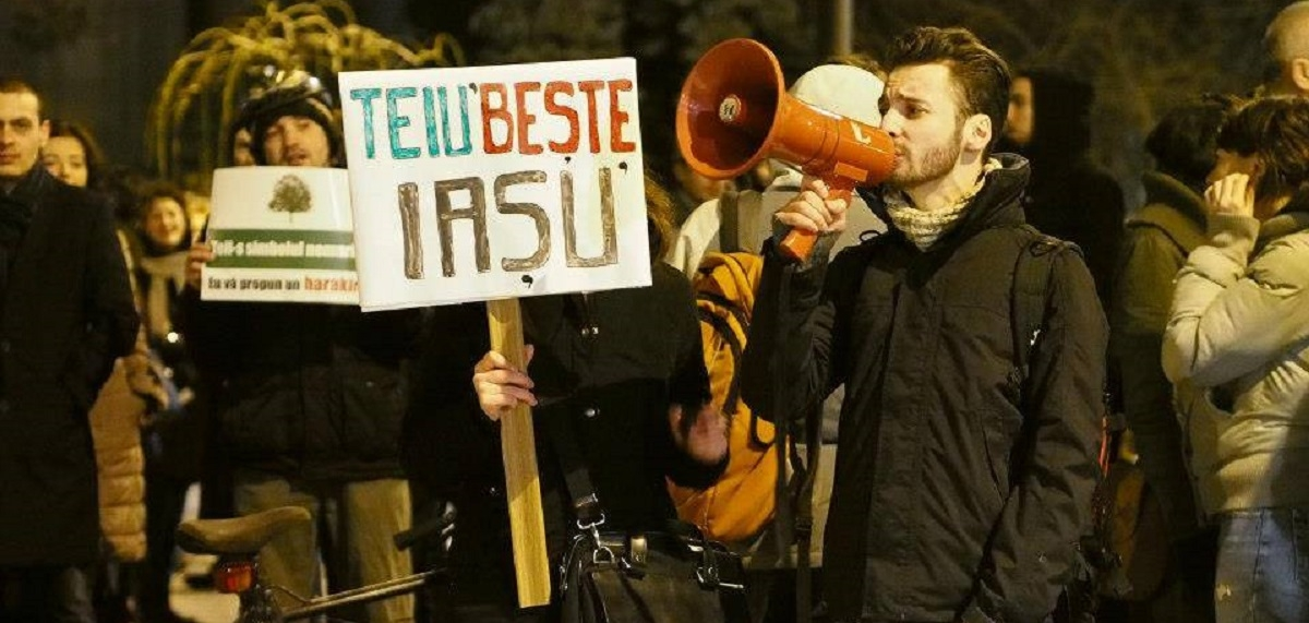 Protest împotriva tăierii teilor din Iași