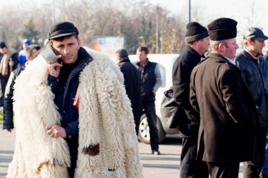 Cioban vorbind la telefonul mobil, marți, la protestul din fața Palatului Parlamentului