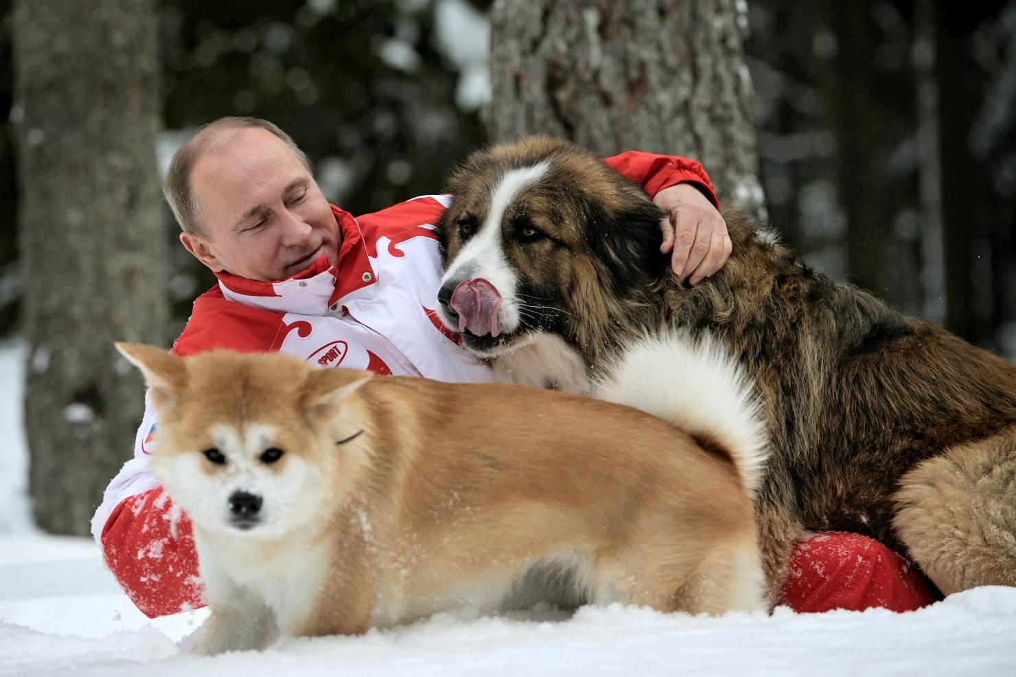 Putin își plimbă câinii