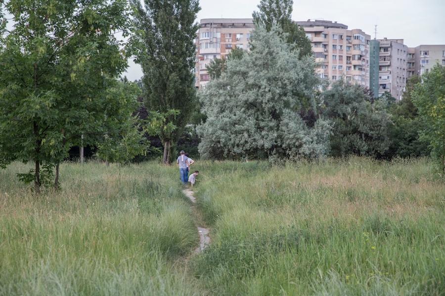 Parcul IOR