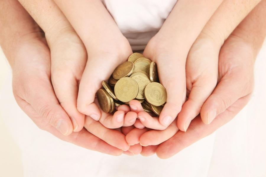 Bani- economisire
