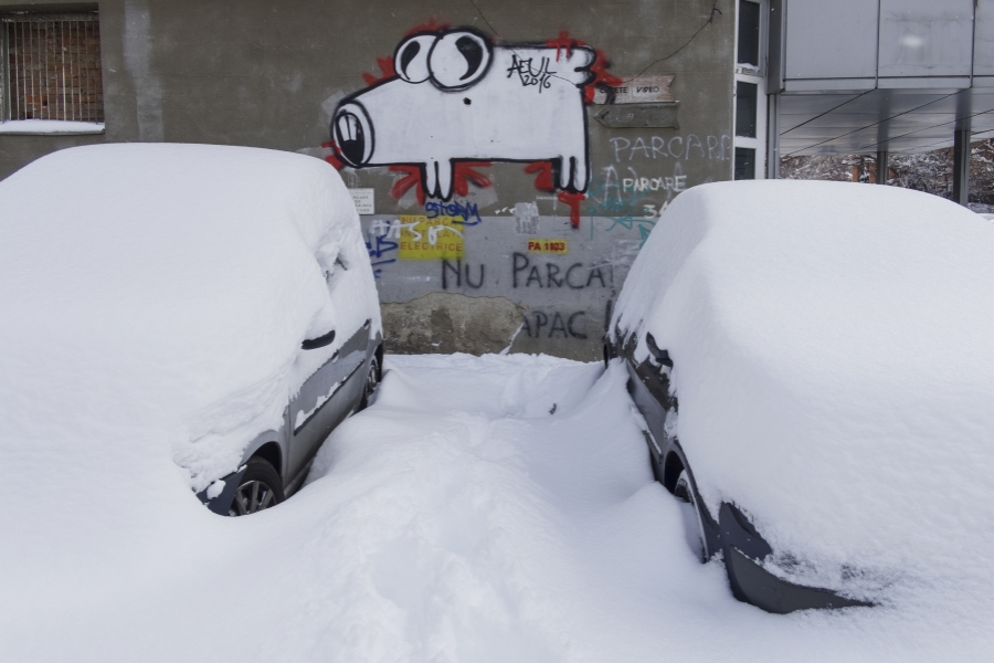 Iarna în București