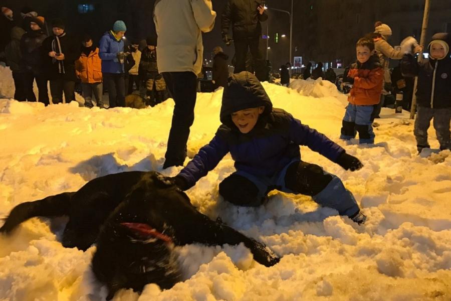Proteste, copii, câine