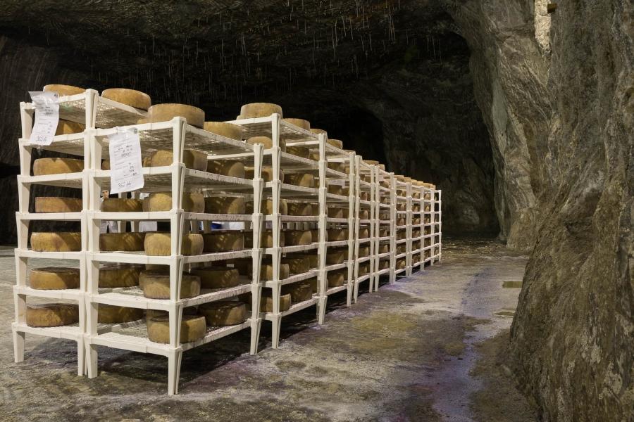 În Salina Praid se maturează cel mai nou tip de brânză apărut pe piața din România