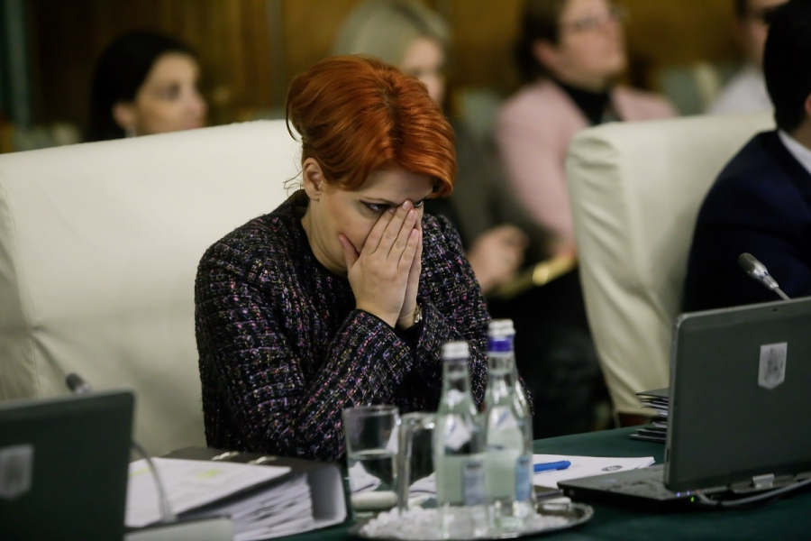 Lia Olguța vasilescu - Guvern