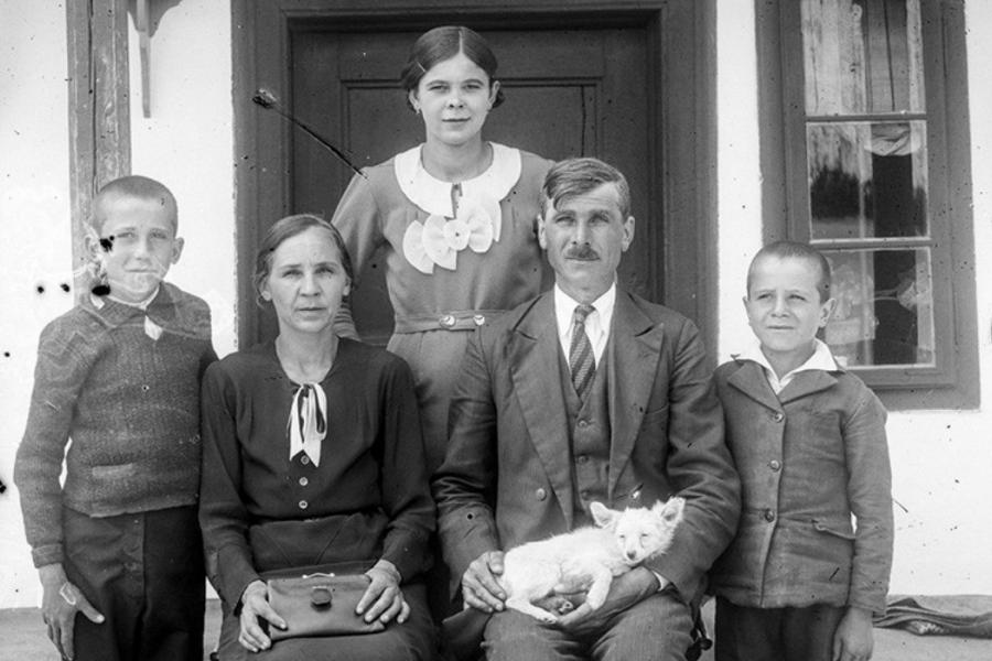 Familia traditionala in literatură română