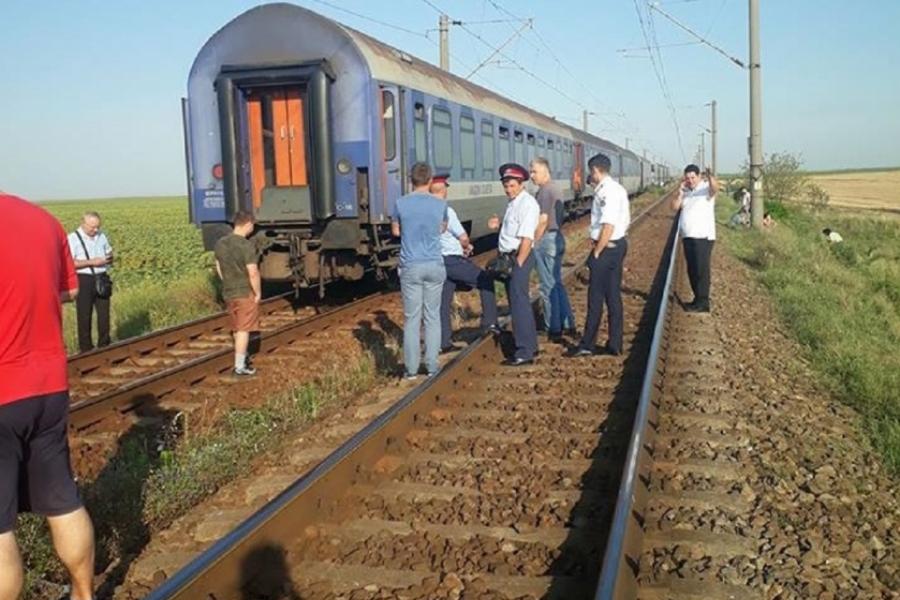 tren în câmp