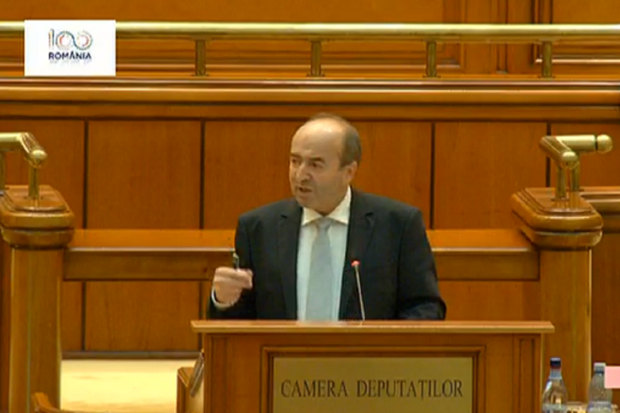 Tudorel Toader - Camera deputatilor