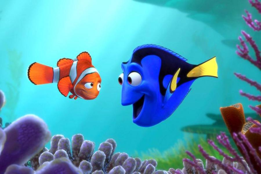 """Finding Nemo"""