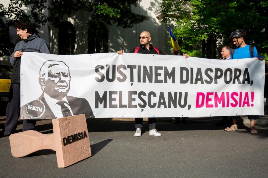 Banner Teodor Meleșcanu
