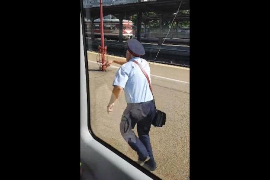 Naș de tren