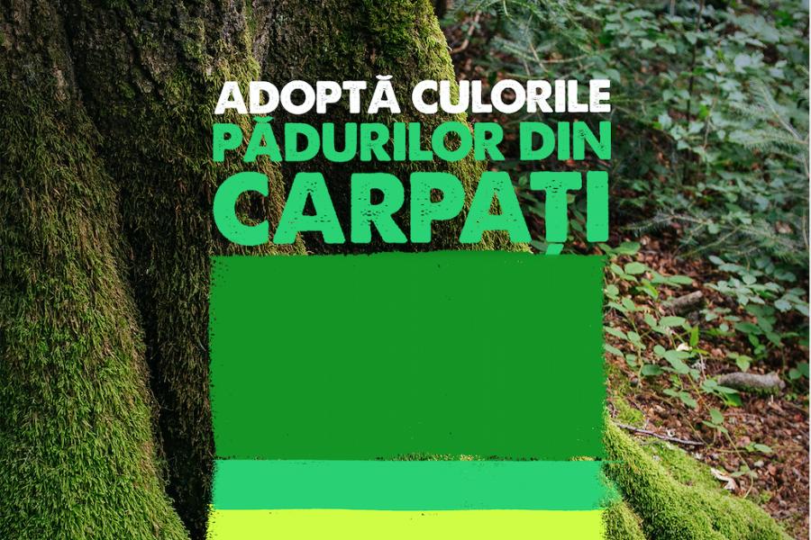 Campania Culori pe cale de dispariție