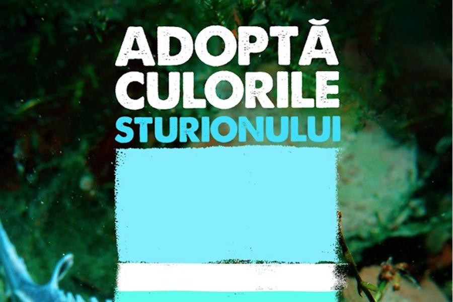 Sturion 2