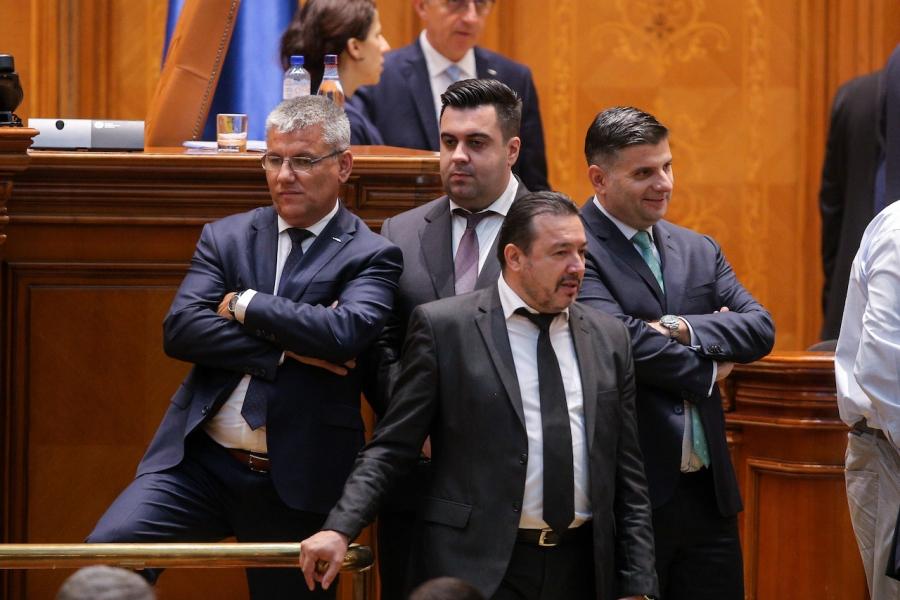 Răzvan Cuc în Parlament