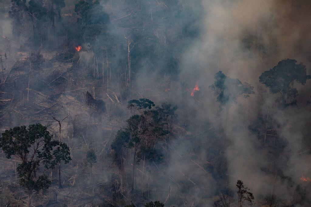 Incendiile din pădurea amazoniană