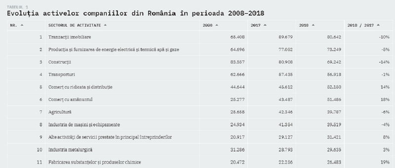 Evoluția activelor companiilor din România în perioada 2008–2018 /Iancu Guda