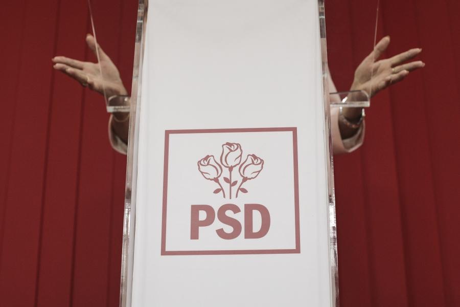 Viorica Dancilă - mâini - Foto Inquam Photos/Octav Ganea