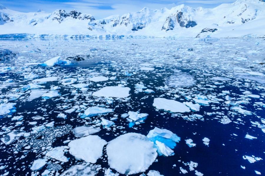 Schimbări climatice
