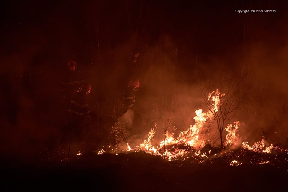 Delta Vacaresti - incendiu