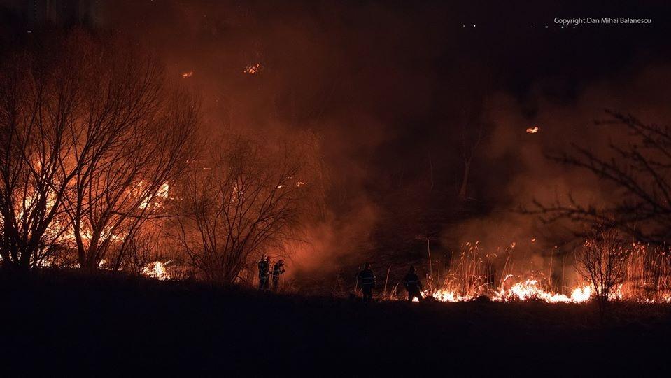 Delta Văcărești - incendiu