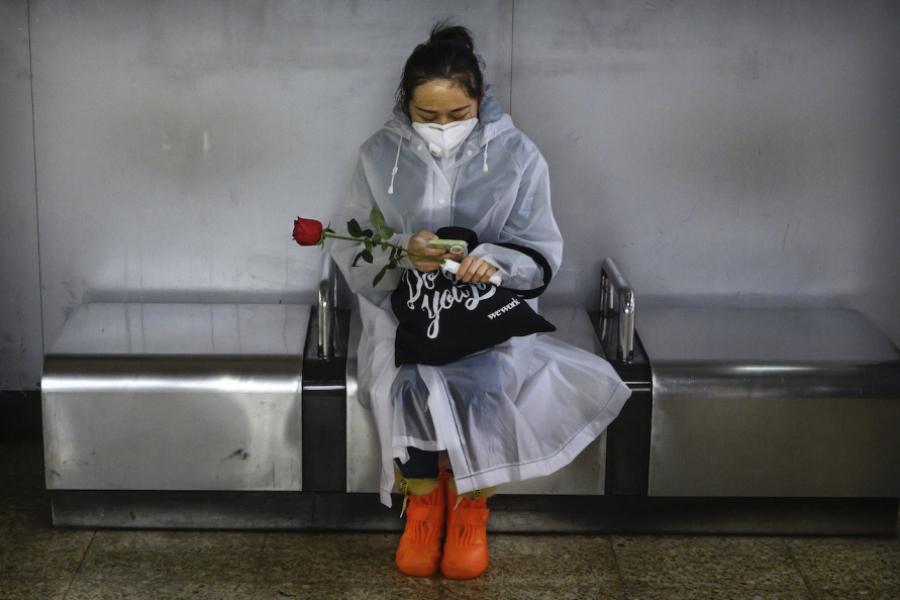 Chinezoaică trandafir