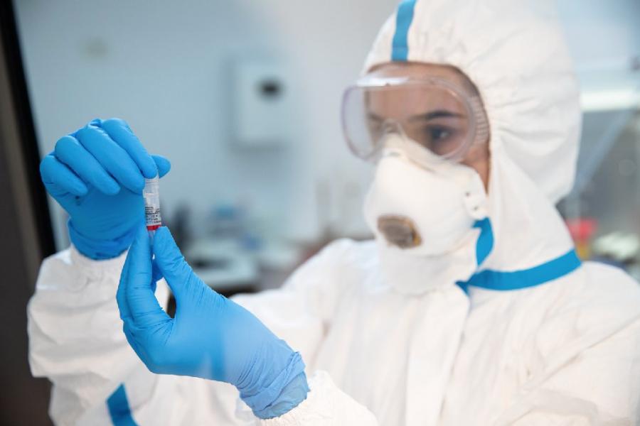 Laborator teste PCR