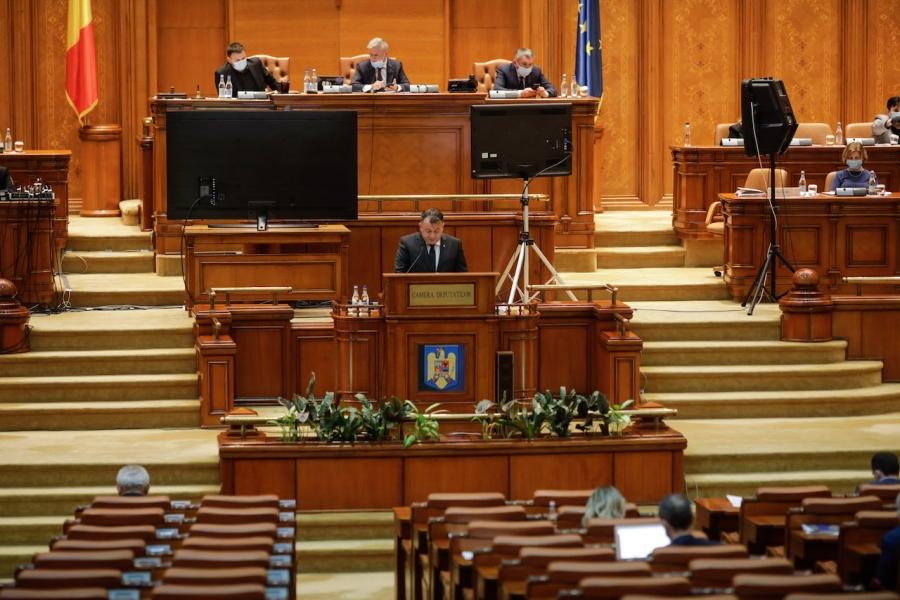 Nelu Tătaru în Parlament