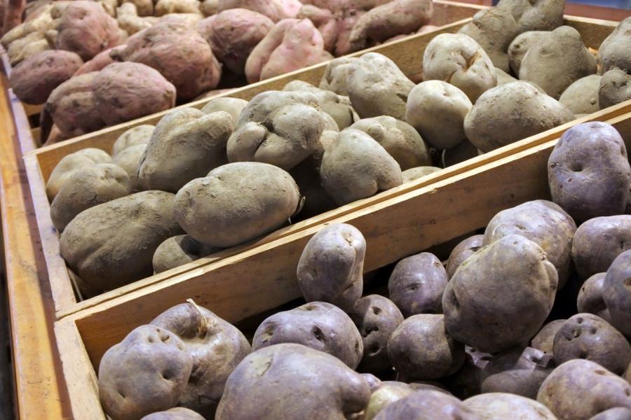 inflatie - cartofi - Foto Rafael Ben-Ari / Avalon Editorial / Profimedia)