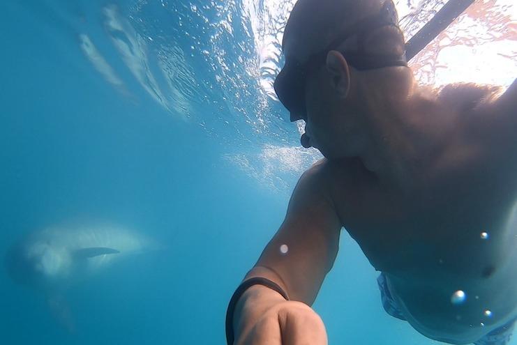 Valentin Marcoci alături de delfini în Marea Neagră