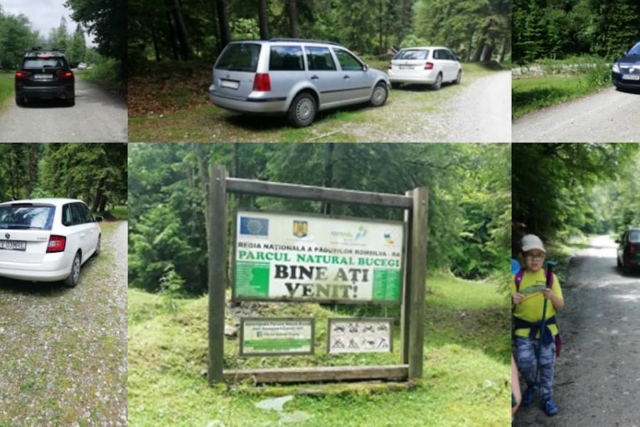 Parcul Național Bucegi