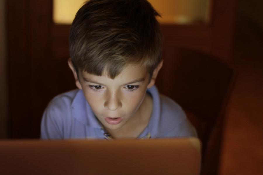 Băiat la școala online