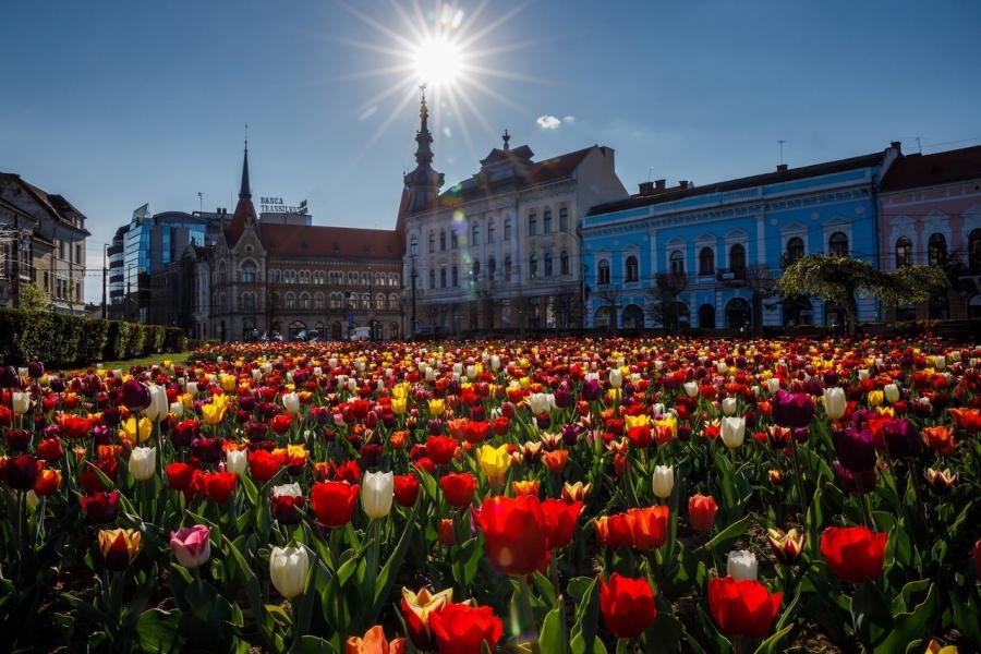 Cluj Capitală Europeană a Inovării