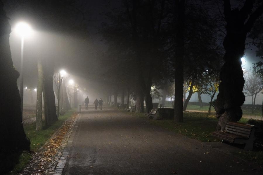 Cluj parc