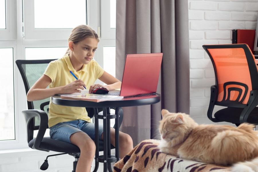 Fată la școala online