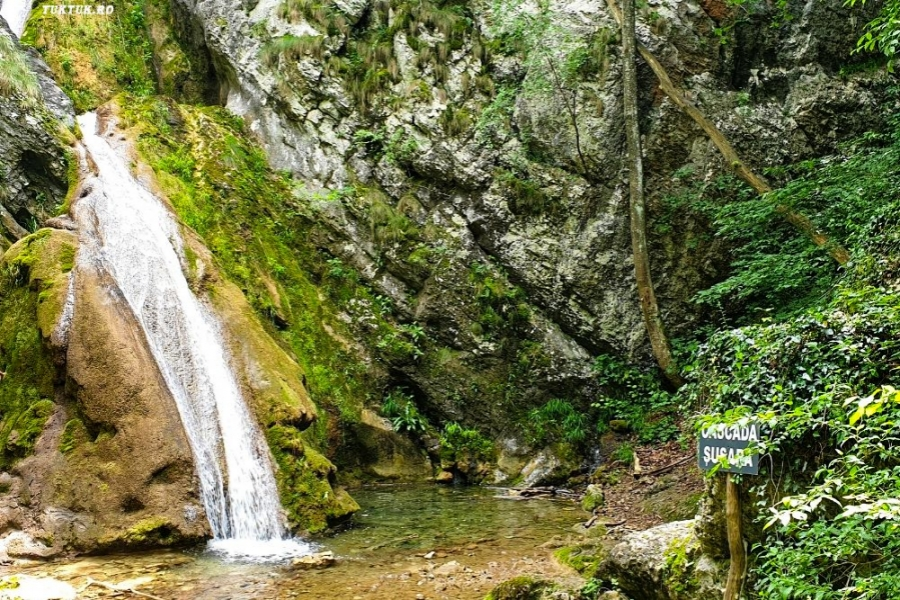 Cascada Șușara