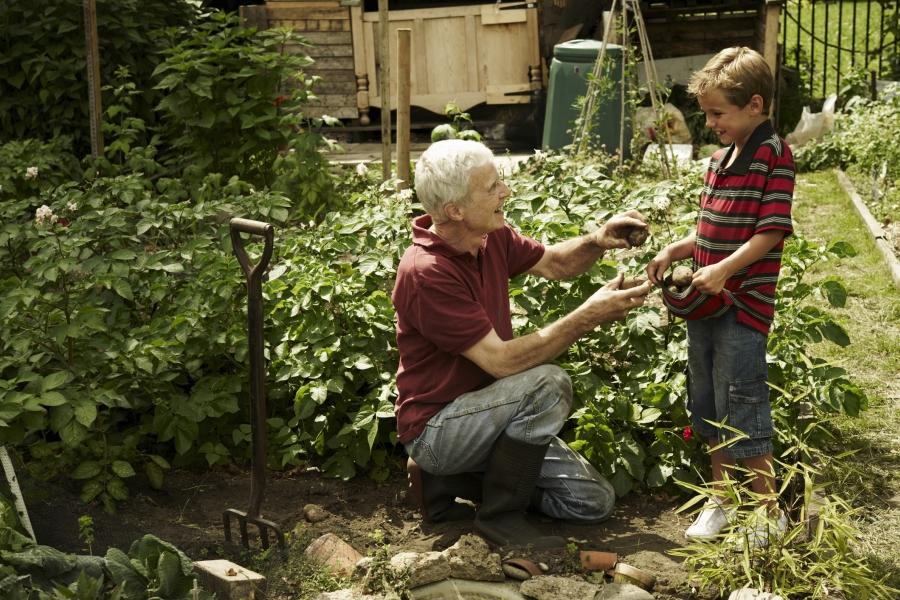 Copil și bunic